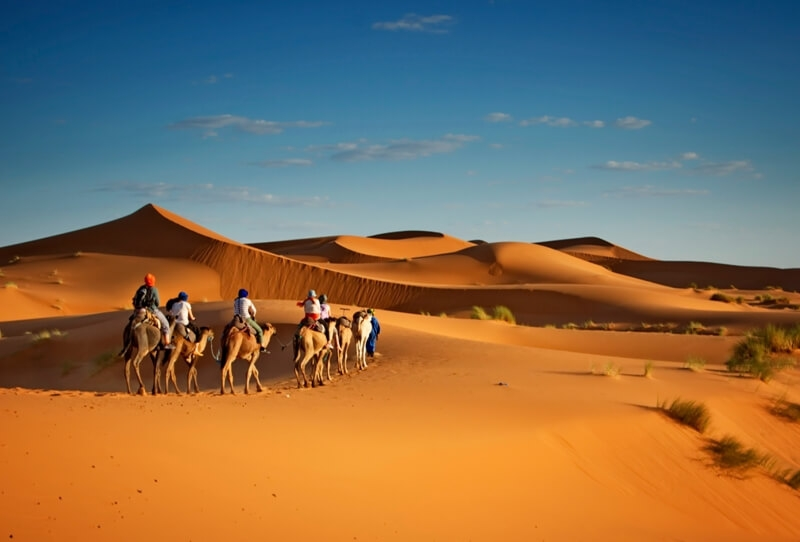 We offer you Siwa and Bahariya Oasis Tour, an amazing adventure tour to enjoy the safari life and explore the Western Desert.