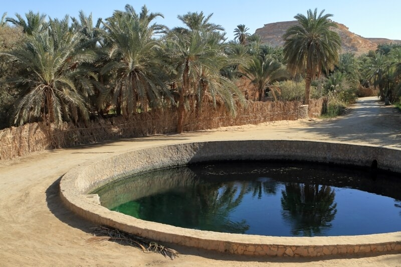 Explore two different sides of Egypt on this 6-day Bahariya Oasis tours. Your tour to Bahariya Oasis, will let you swim in the hot spring