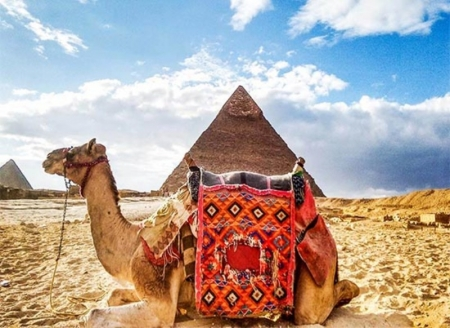 Camel ride adventure Around the pyramids